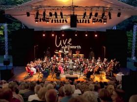 Viennese Orchestra